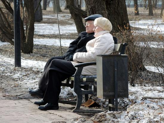 Пенсионный возраст россиян предложили привязать к доходам
