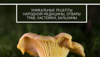Уникальная книга Алексея Ларина про исцеление и профилактику рака, онкологии