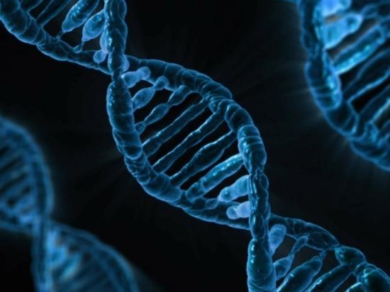Закон о защите ДНК спасет россиян от смертельной опасности