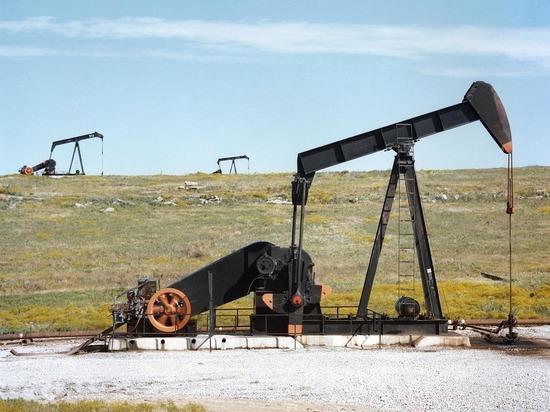 Белоруссия решила повысить тарифы на транзит российской нефти